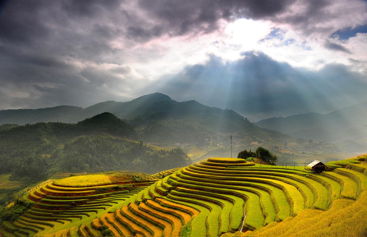 Bán nhớt Motul chất lượng cao tại Hà Giang