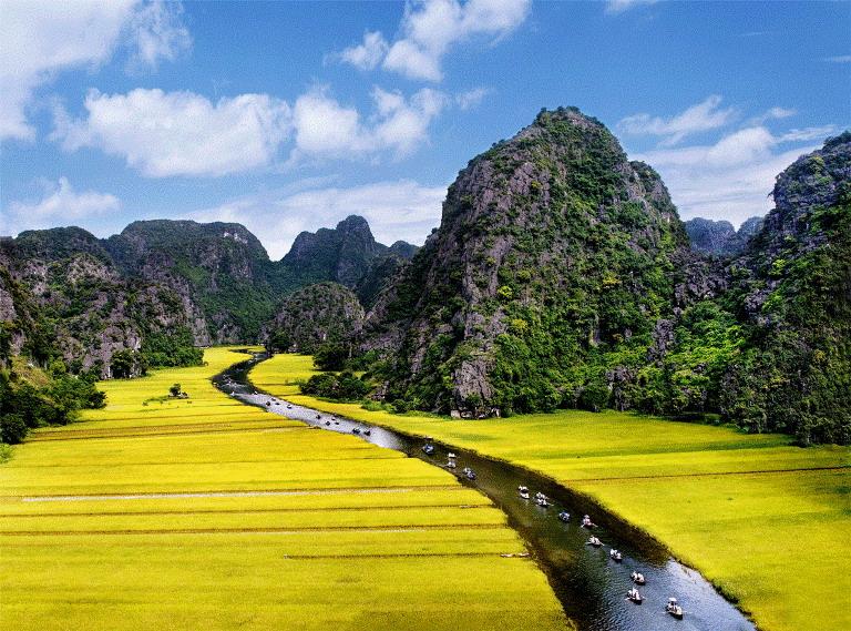 Bán nhớt Motul chất lượng cao tại Ninh Bình
