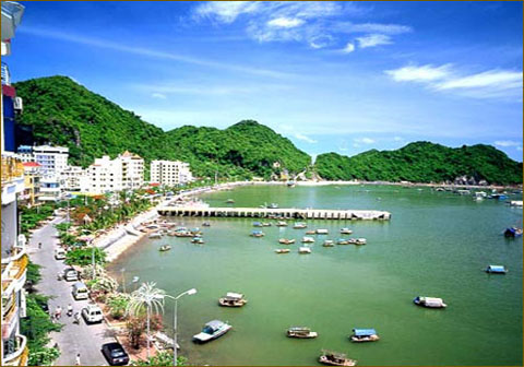 Bán nhớt Motul chất lượng cao tại Quảng Ninh