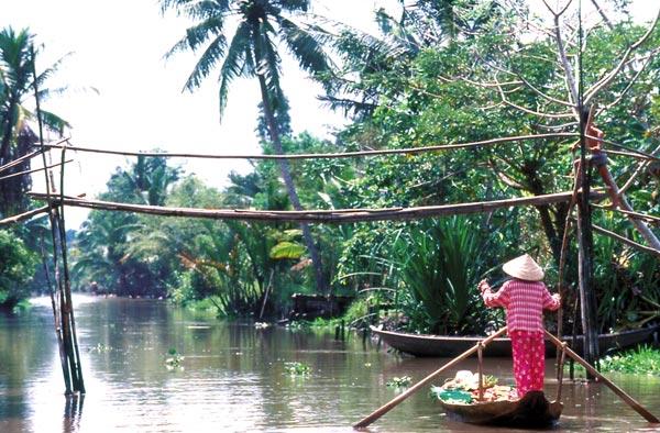 Bán nhớt Motul chất lượng cao tại Vĩnh Long